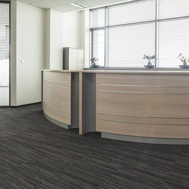 Kraus Contract Carpet | Concord, CA